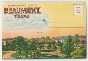 Primary view of object titled '[Fold Out Postcard of Beaumont]'.