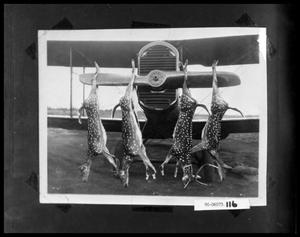 Primary view of object titled 'Four Deer Hanging on Propeller'.