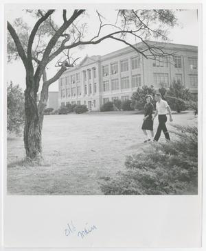 Primary view of object titled '[Photograph of Students Walking]'.