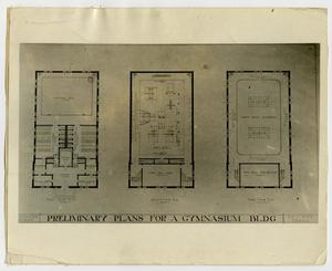 Primary view of object titled '[Photograph of Preliminary Plans for Gymnasium Building]'.