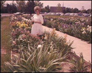 Primary view of object titled '[Photograph of Student in Iris Garden]'.