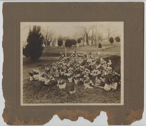 Primary view of object titled '[Photograph of Grave of Mary E. Wheatly]'.