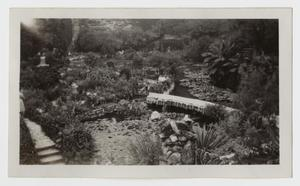Primary view of object titled '[Photograph of Japanese Gardens in San Antonio, Texas]'.