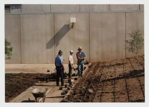 Primary view of object titled '[Photograph of Campus Center Beautification Project]'.