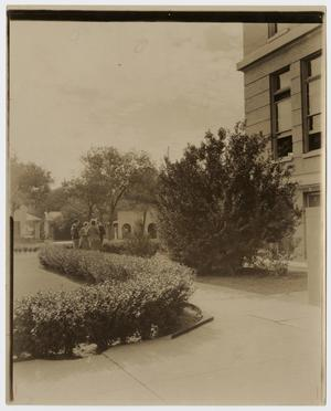 Primary view of object titled '[Photograph of Waco High School]'.