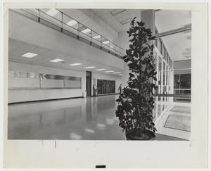 Primary view of object titled '[Photograph of Inner Hall of Campus Center]'.