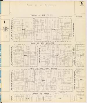 Primary view of object titled 'Mexico City 1905 Sheet 9 (Skeleton)'.