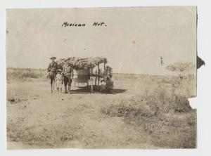 Primary view of object titled '[Photograph of a Mexican Hut]'.
