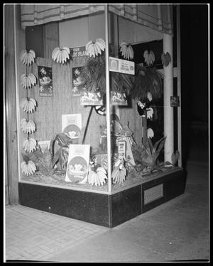 Primary view of object titled 'Woolworth's Store Window'.