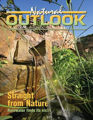 Primary view of object titled 'Natural Outlook, Summer 2008'.