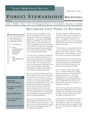Primary view of object titled 'Forest Stewardship Briefings, December 2012'.