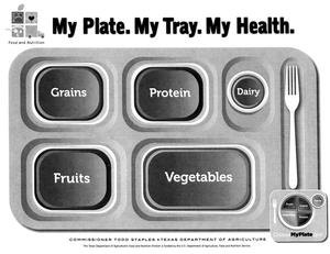 Primary view of object titled 'My Plate. My Tray. My Health.'.