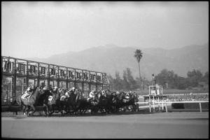 Primary view of object titled '[Photograph of Horse Race]'.