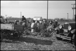 Primary view of object titled '[Photograph of Workers on Break]'.