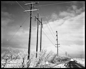 Primary view of object titled 'Snow and Telephone Wires'.