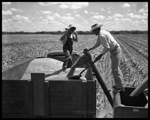 Primary view of object titled 'Men Working in Field'.