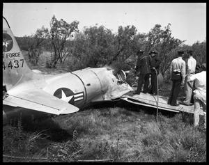 Primary view of object titled 'Plane Crash'.