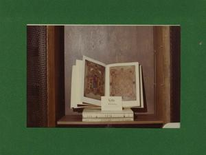 Primary view of object titled '[Photograph of the Book of Kells]'.