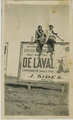 Primary view of object titled '[Photograph of DeLaval Billboard]'.