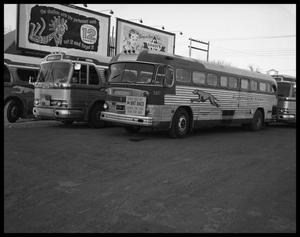 Primary view of object titled 'Rat Race Buses'.
