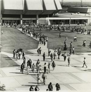 Primary view of object titled '[Photograph of Students Walking from Moody Coliseum]'.