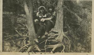 Primary view of object titled '[Photograph of Two Women in Tree]'.