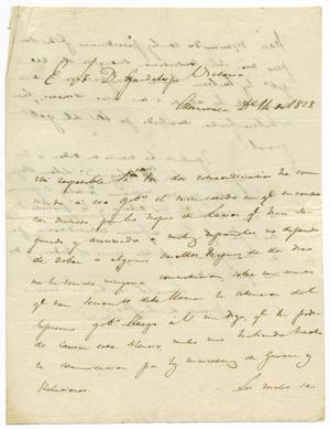 Primary view of object titled '[Letter from Zavala to Victoria, December 12, 1828]'.