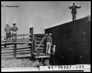 Primary view of object titled 'Six Men by Cattle Chute and Rail Car'.