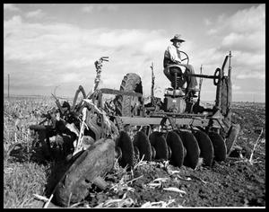 Primary view of object titled 'Cotton Plowing'.