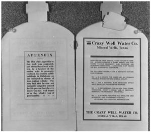 Primary view of object titled 'The Crazy Well Water Company'.