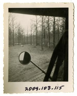 Primary view of object titled '[Photograph of Forest by Dirt Road]'.