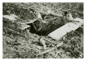 Primary view of object titled '[Photograph of Booby Trap]'.
