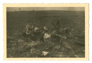 Primary view of object titled '[Photograph of Debris]'.