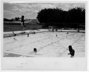 [Swimmers at Fretz Park Pool]