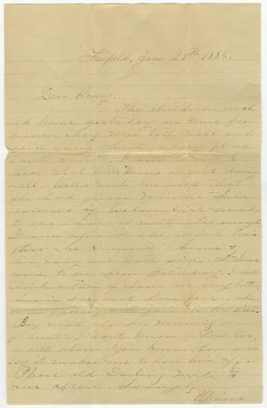 Primary view of object titled '[Letter from Minnie Bradley to L. D. Bradley - June 29, 1885]'.