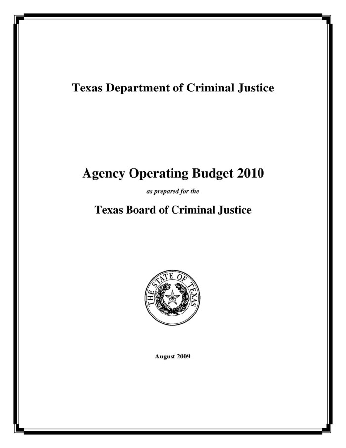 primary view of object titled texas department of criminal justice operating budget 2010