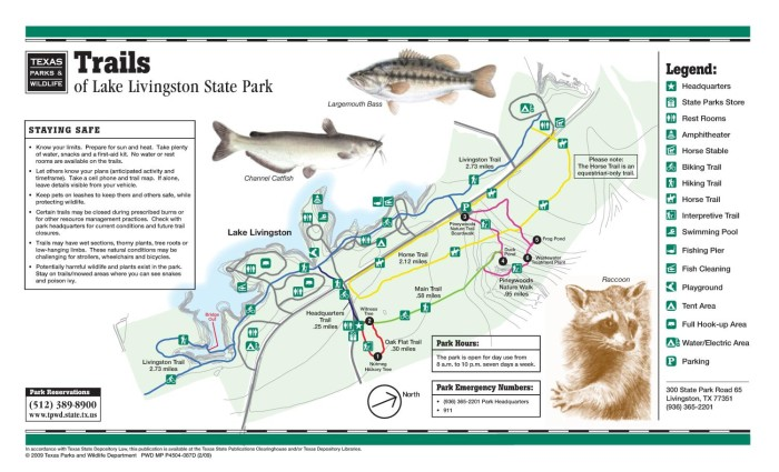 Lake Livingston State Park Map Trails of Lake Livingston State Park   The Portal to Texas History
