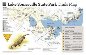 Primary view of object titled 'Lake Somerville State Park:Trails Map'.