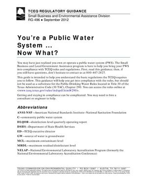Primary view of object titled 'You're a Public Water System... Now What?'.