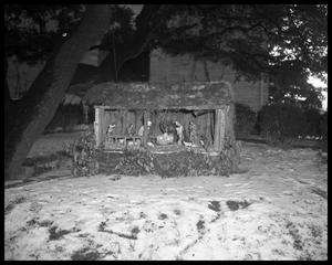 Primary view of object titled 'St. Ignatius Martyr Church Nativity Scene'.