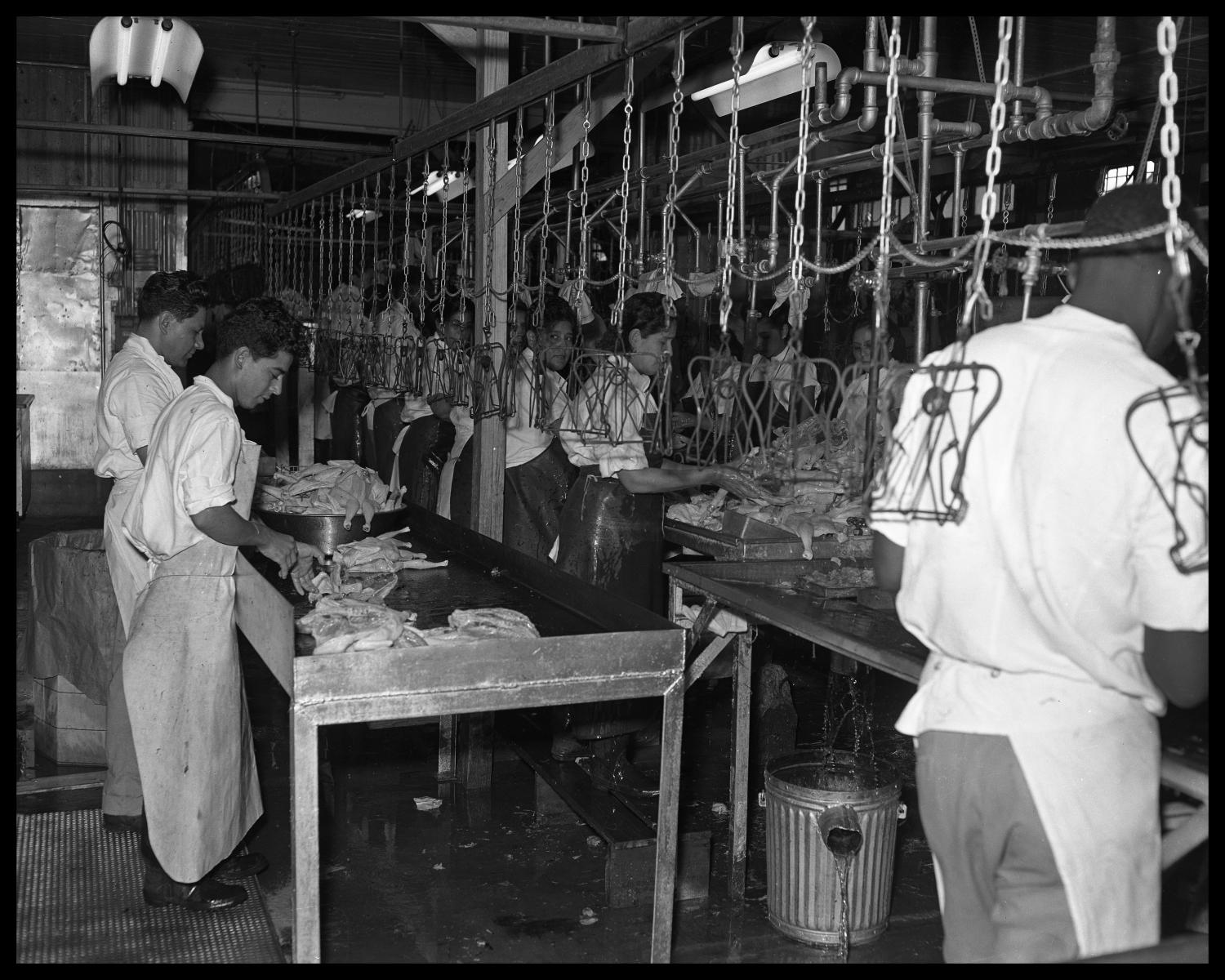 East Poultry Processing Plant                                                                                                      [Sequence #]: 1 of 1