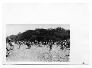 Primary view of object titled '[Mexican Revolutionaries]'.