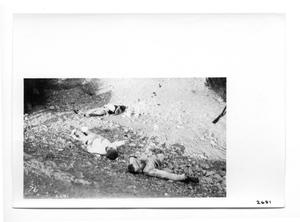 Primary view of object titled '[Mexico Revolution Dead]'.