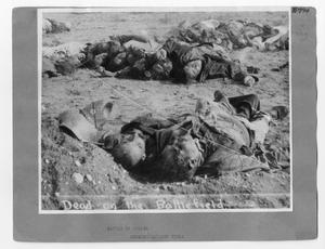 Primary view of object titled '[Dead On The Battlefield]'.
