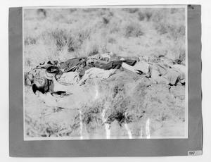 Primary view of object titled '[The Dead]'.