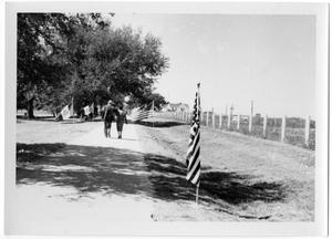 Primary view of object titled '[Dirt Path Lined with Flags]'.