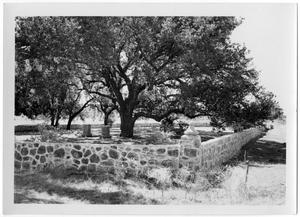 Primary view of object titled '[Johnson Family Cemetery]'.