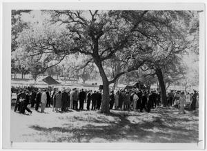 Primary view of object titled '[Crowd Under Trees]'.