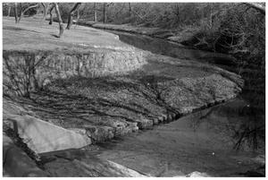 Primary view of object titled '[Shallow Creek Winding Past a Forest]'.