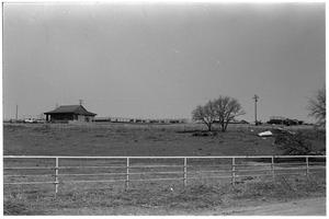 Primary view of object titled '[Ranch House and Cattle]'.